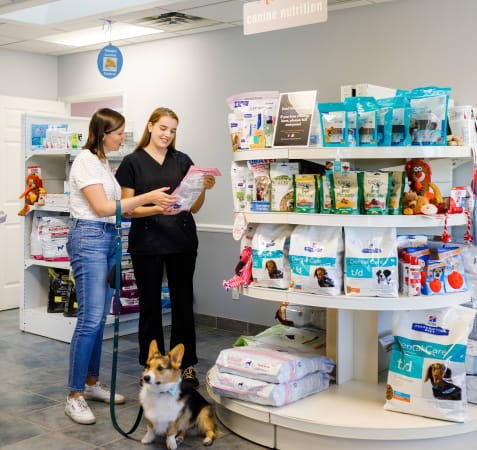 Nutrition Counselling, Blue Mountain Vet Services